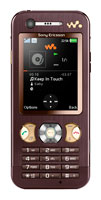 Ремонт Sony Ericsson W890i в Санкт-Петербурге