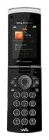 Ремонт Sony Ericsson W980i в Санкт-Петербурге